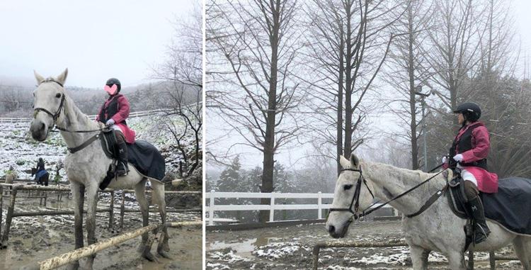 入会特典として「乗馬体験」